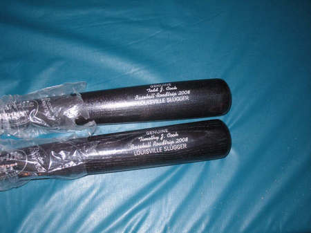 3-bats.jpg