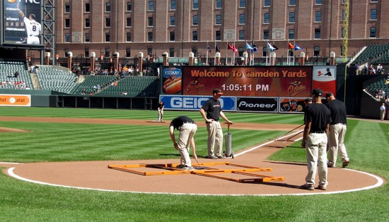 13 - readying the field.jpg