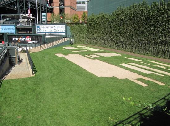 15 - field patch grass.jpg