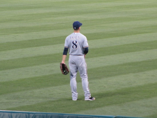 25 - braun in LF.JPG
