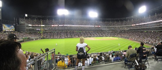 17 - Cell LF field HR panaramic.jpg