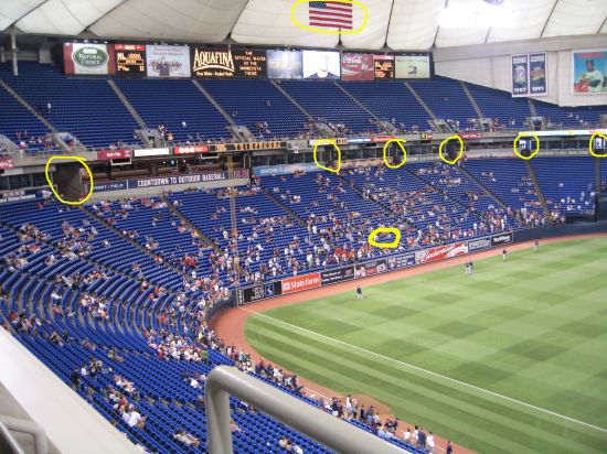7 - view of left field with explanatory circles.JPG