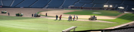 11a - Chase Field infield and grass laying.jpg