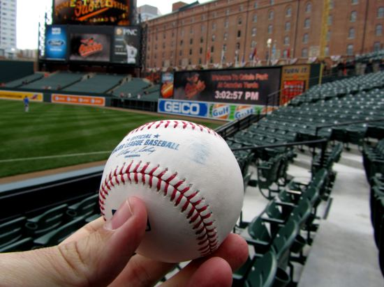 2 - first baseball of 2011.JPG