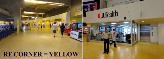 15-yellow-concourse.jpg?w=555&h=201