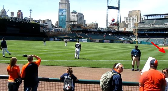 9-stray-ball-at-comerica